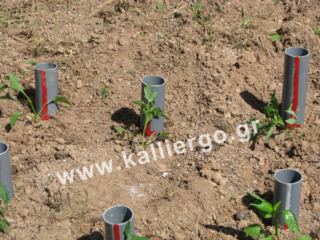 2015-04-09-deep-irrigation-09.jpg