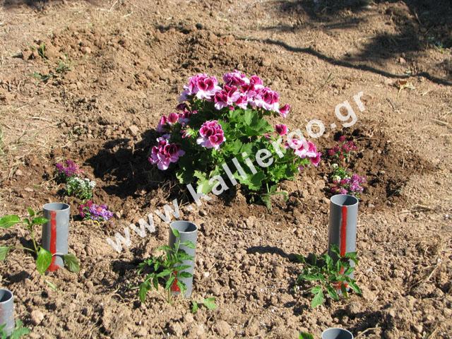 deep-irrigation-2015-04-16-b.jpg