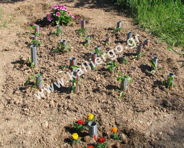 deep-irrigation-2015-04-16.jpg