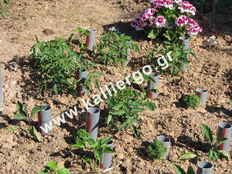 deep-irrigation-2015-04-29.jpg